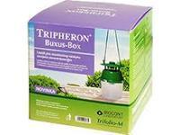 Tripheron Buxus -Box -Feromonový lapák zavíječe zimostrázového