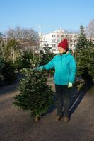 Vánoční Jedle kavkazská - Standard 130-175cm