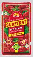 FORESTINA Substrát pro jahody a jiné drobné ovoce 40 l