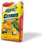 Citrusy a palmy