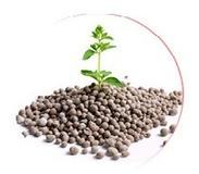Bio ochrana rostlin