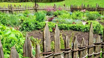 Zahrada bez chemie