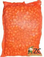 Cibule Sazečka šalotka žlutá 38-47 mm 25 kg - doprodej