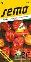 Chilli semínka TRINIDAD MORUGA SCORPION RED 10ks extrémně silně pálivá