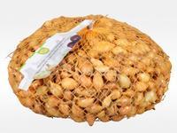Cibule Sazečka Všetana 7-15 mm 0,5 kg - doprodej