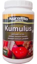 AgroBio KUMULUS WG 1 kg