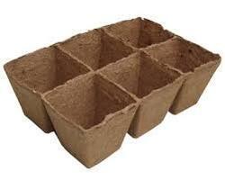 Rašelinový kontejner 8x8 cm - 6 buněk