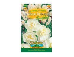 Narcis botanický CHEERFULNESS 4ks